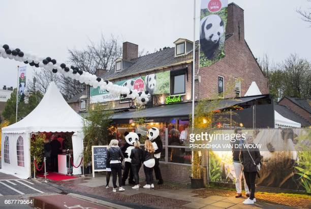 Residents and business owners from Rhenen are waiting for the arrival of the giant pandas Wu Wen and Xing Ya from China on April 12 2017 in Rhenen...