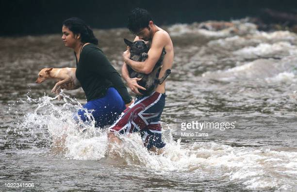 Residents carry dogs through flood waters to dry land after playing in the water briefly on the Big Island on August 23 2018 in Hilo Hawaii Hurricane...