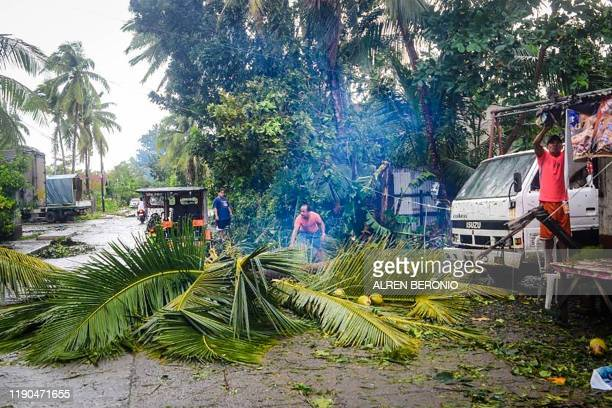 Residents clear an uprooted coconut tree brought down by winds during typhoon Phanfone from a road in Borongan Eastern Samar province central...