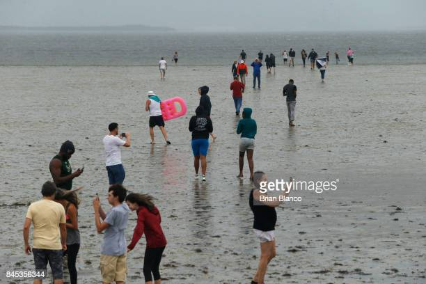 Residents inspect the extreme receding water in Tampa Bay ahead of Hurricane Irma on September 10 2017 in Tampa Florida Hurricane Irma made landfall...