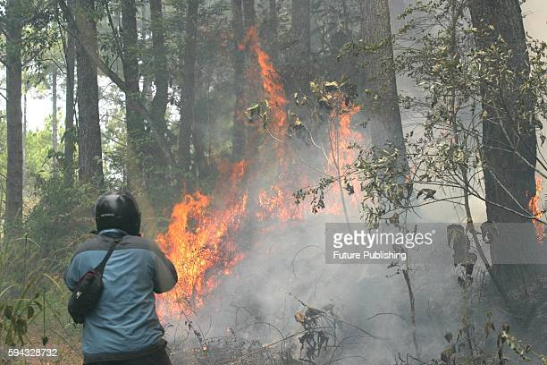 Residents look at a wildfire in a pine forest in Simalungun on August 22 2016 in North Sumatra Indonesia During annual dry season hundreds of fires...