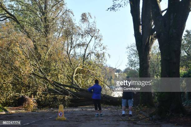 Residents look at fallen trees that were blown down by Storm Ophelia blocking a road in Irelands southwest city of Cork on October 17 2017 Ireland...
