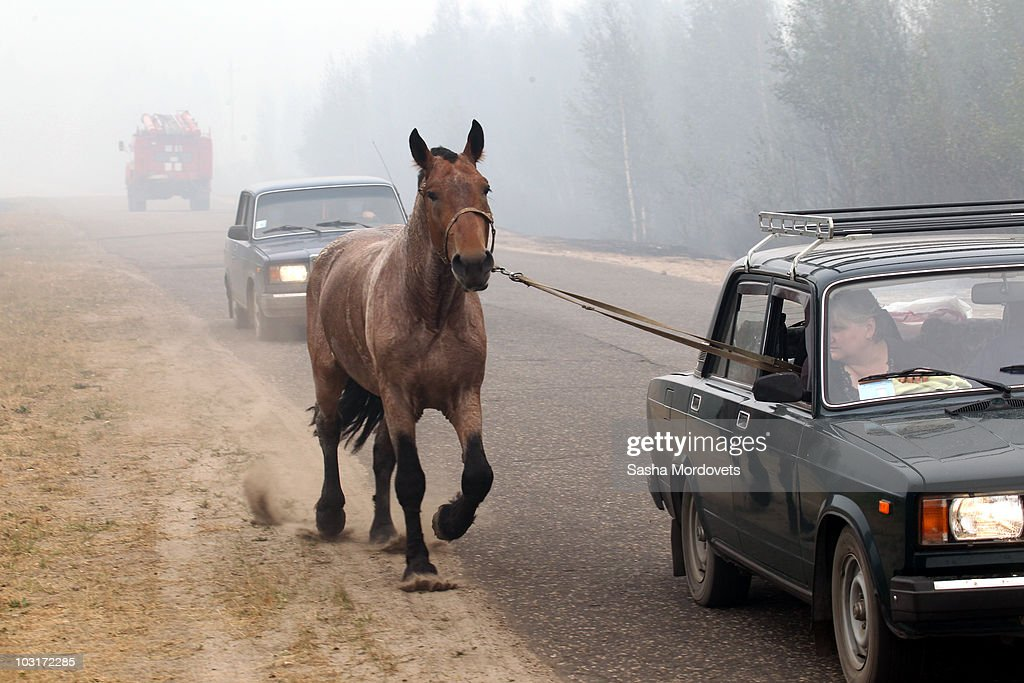 Residents move their belongings and horse from a village burnt by a forest fire on July 30, 2010 in Verkhnyaya Vereya, Russia. Putin visited the village where all 341 homes have burned to the ground. The Kremlin called the army to help assist as fires rage over 214,136 acres throughout vast sections of Russia. A state of emergency was ordered on Friday as firefighters continued to save cillages and forerests from the blaze.