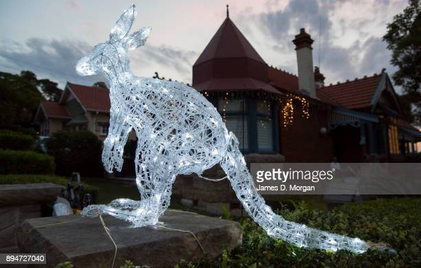 Christmas Kangaroo Lights.60 Top Australia Lights Up For Christmas Pictures Photos