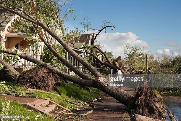 Residents survey tornado damage.