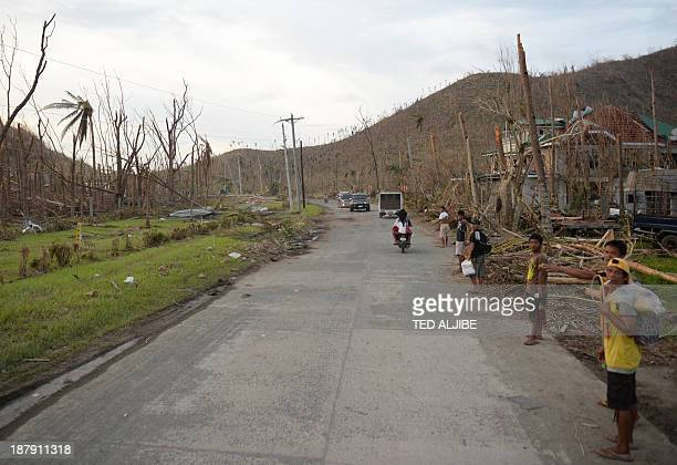 Residents try to hitch hike along a road with destroyed coconut trees in Palo town, Leyte province, central Philippines, on November 13 days after...