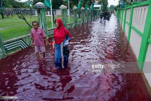 Residents wade through floodwaters dyed red from the waste of a batik factory, a traditional textile product, in Pekalongan, central Java on February...