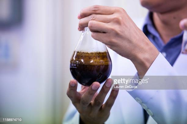 Residue produced during the THC and CBD extraction process at the Medicinal Cannabis Research Institute at Rangsit University on August 2 2019 in...