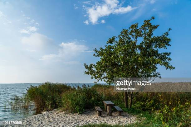rest area with apple tree - fischland darss zingst photos et images de collection