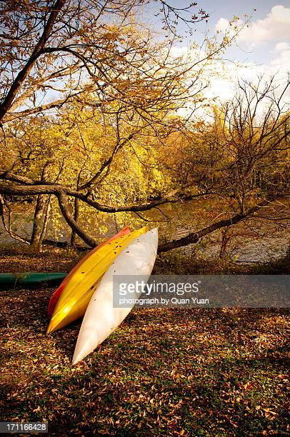 a rest in autumn sunset - yuan quan stock pictures, royalty-free photos & images