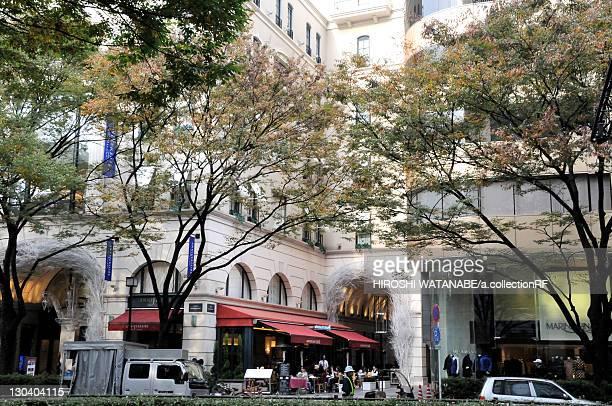 restaurant and trees - 表参道 ストックフォトと画像