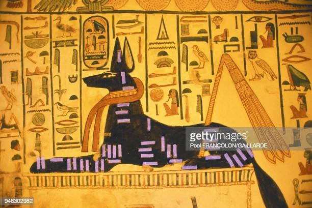 Restauration de la tombe de Néfertari dans la vallée des reines près de Louxorici Anubis sous la forme d'un chien noir en mars 1990 Egypte