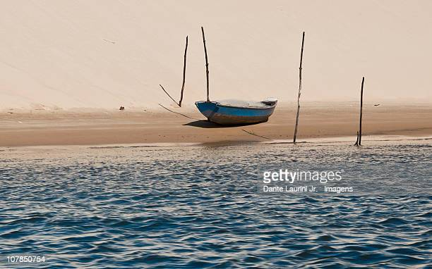 resting - maranhao state stock pictures, royalty-free photos & images