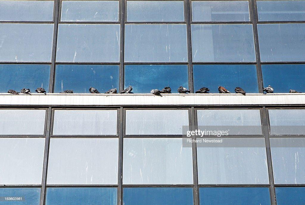 Shispar Peak Stock-Foto - Getty Images