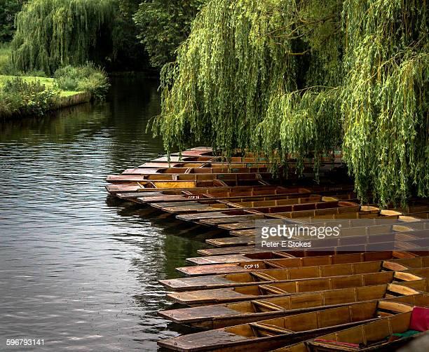 Resting punts in Cambridge