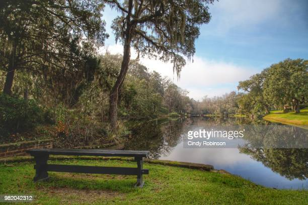 resting spot - southeast stock pictures, royalty-free photos & images