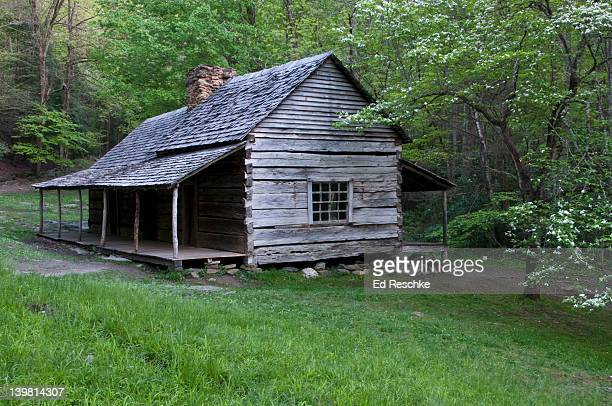 restored noah bud ogle log cabin 1883-1925, first settler cabin with cornfields and mill. great smoky mountains national park, roaring fork motor nature trail, tennessee, usa - roaring fork motor nature trail stock pictures, royalty-free photos & images