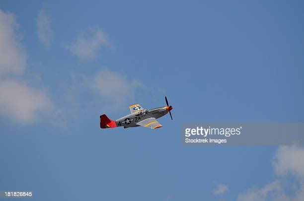 a restored p-51 mustang associated with the tuskegee airmen in flight over florida. - tuskegee airmen stock pictures, royalty-free photos & images