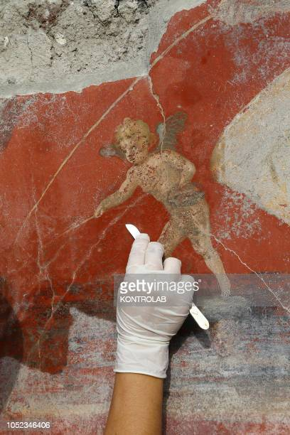 Restorer works on a fresco depicting a little Cupid in the House with Garden, recently discovered in the Regio V new escavations area the...