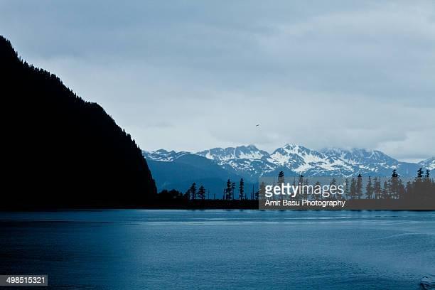 resurrection bay, kenai fjords, seward, alaska - golfo do alasca imagens e fotografias de stock
