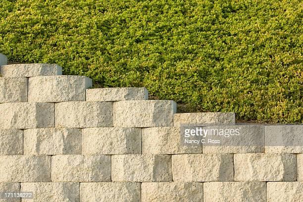 Mur de retenue des eaux et de plantes-dessus, fond, un motif Diagonal
