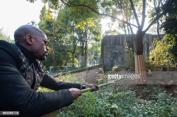 Retired American boxer Floyd Mayweather Jr feeds his newly adopted giant panda 'TMT Floyd Mayweather' with an apple at the Chengdu Research Base of...