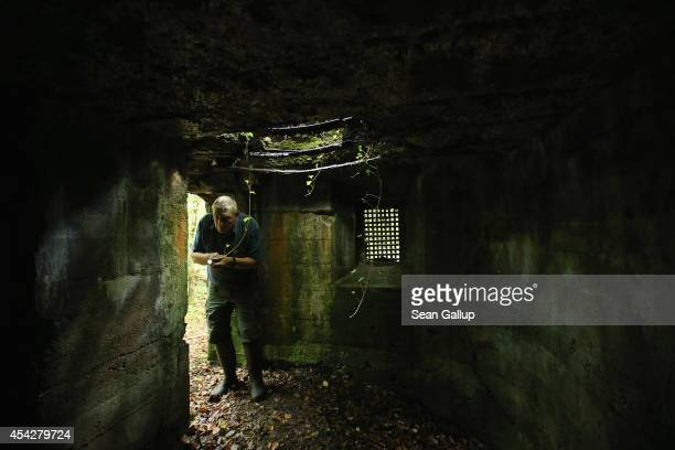 Retired forest services worker Daniel Gadois uses a flashlight to inspect a former World War I German bunker in Spincourt forest on August 27 2014...