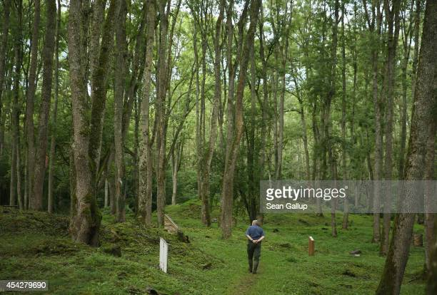 Retired forest services worker Daniel Gadois walks on the site of the former village of Bezonvaux among terrain still pockmarked by World War I...