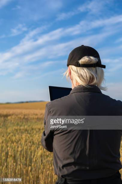 retired man using a digital tablet in a crop field - johnfscott stock pictures, royalty-free photos & images