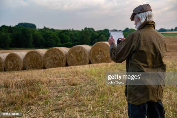 retired man using digital tablet in a field at dusk - johnfscott stock pictures, royalty-free photos & images