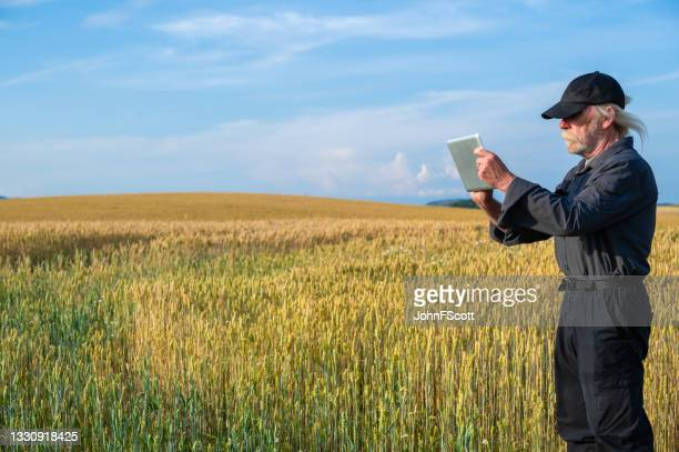 retired man with a digital tablet in a crop field - johnfscott stock pictures, royalty-free photos & images
