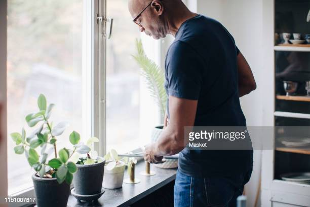 retired senior man watering houseplants on window sill at home - watering stock pictures, royalty-free photos & images