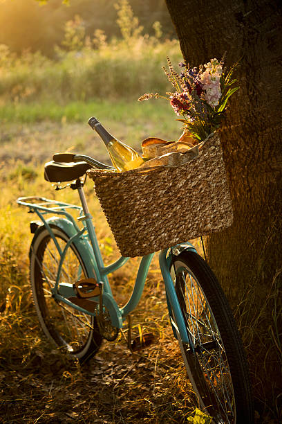 Retro Bicycle With Wine In Picnic Basket XXXL Wall Art