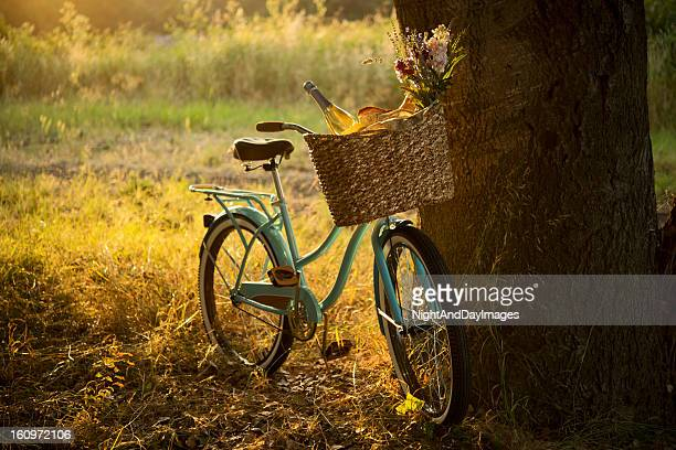retro bicycle with wine in picnic basket - xxxl - basket stock photos and pictures