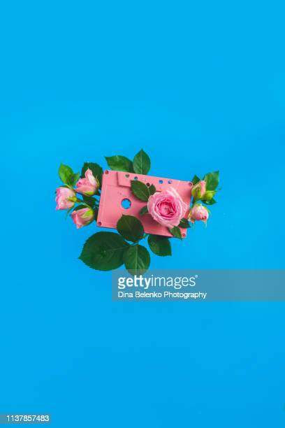 retro cassette tapes with rose flowers and leaves on a vibrant blue background. sounds of spring music concept with copy space. - copy space imagens e fotografias de stock