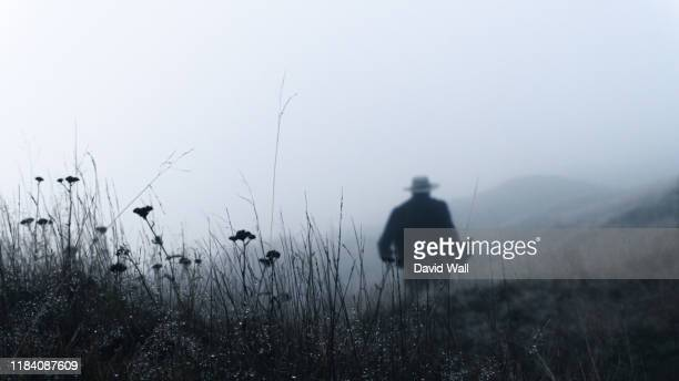 a retro classic mystery film noir concept. an out of focus, blurred man with a fedora hat and long coat, running away from the camera. silhouetted in mist. - mafia foto e immagini stock