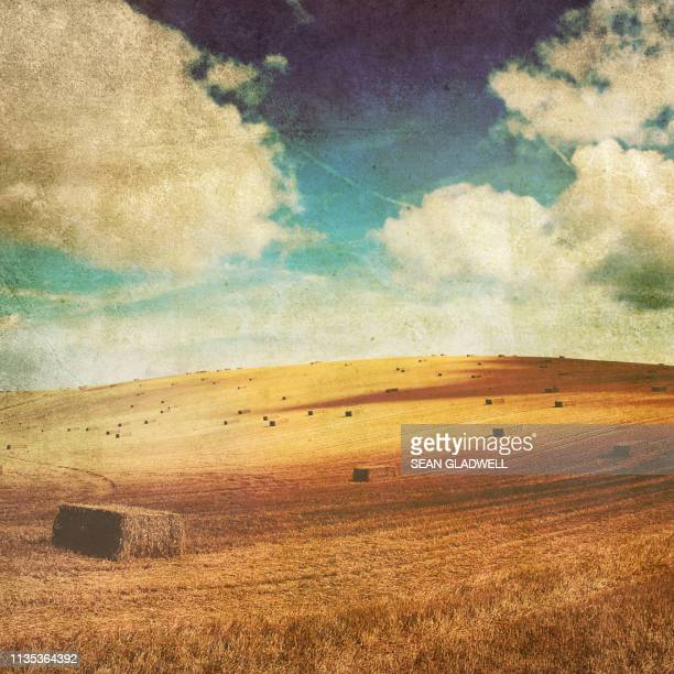 retro haystacks - fading stock pictures, royalty-free photos & images
