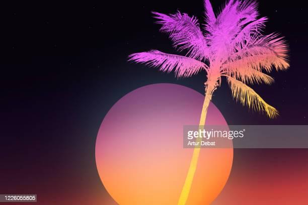 retro style background of miami with palm tree and big dusk sun. - ラテン音楽 ストックフォトと画像