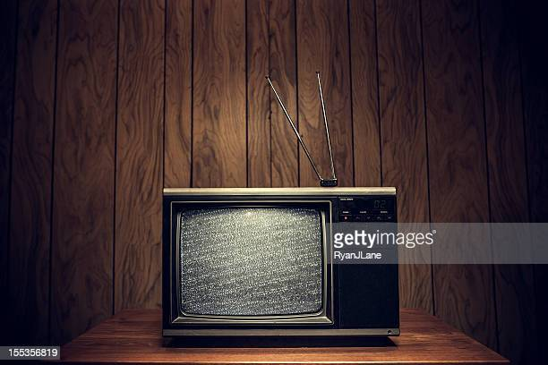 Retro Television in Wood Paneled Living Room