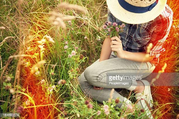 stile retrò fotografie - mazzi fiori di campo foto e immagini stock