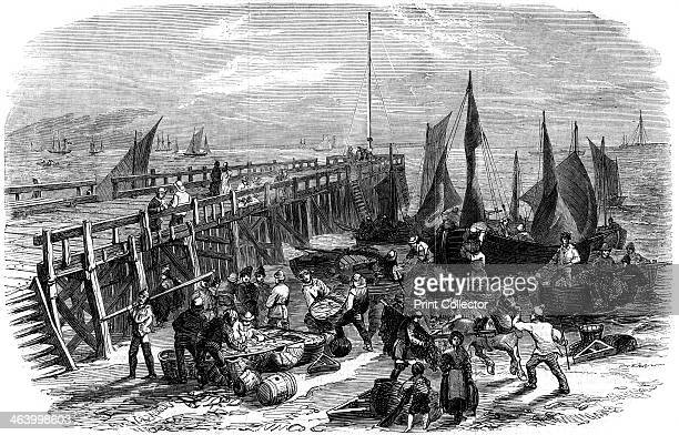 Return of the herring boats, Yarmouth, Isle of Wight, 1856. From The Illustrated London News .