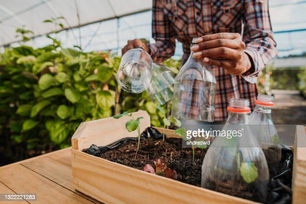 reusing plastic to plant cultivate sustainability - environmental issues stock pictures, royalty-free photos & images