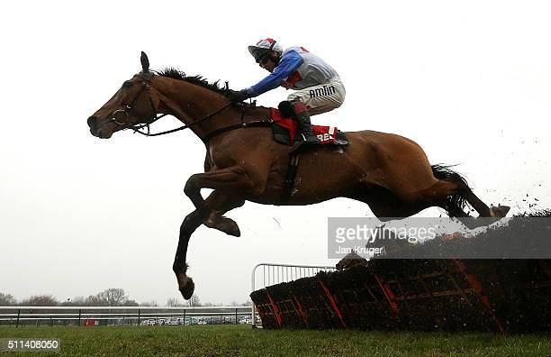 Reve De Sivola ridden by Richard Johnson jumps the last to win the Betfred ÒHome Of Goals GaloreÓ Hurdle Race at Haydock racecourse on February 20...