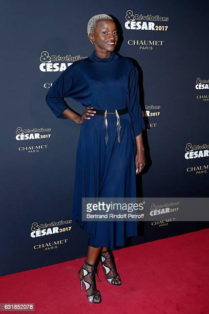 Revelation for 'La fine equipe' Annabelle Lengronne attends the 'Cesar Revelations 2017' Photocall and Cocktail at Chaumet on January 16 2017 in...