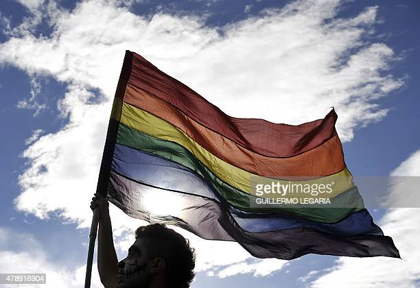 A reveler flutters a rainbow flag during the Gay Pride Parade in Bogota Colombia on June 28 2015 AFP PHOTO / GUILLERMO LEGARIA