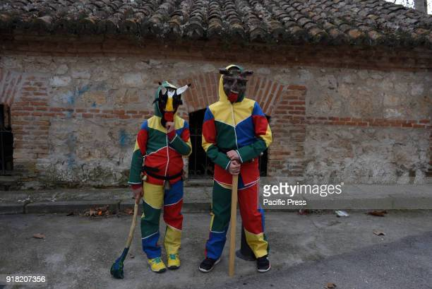 Revelers dressed as 'Botarga' the traditional disguise of the carnivals in many villages of Guadalajara's province pictured in the last day of...