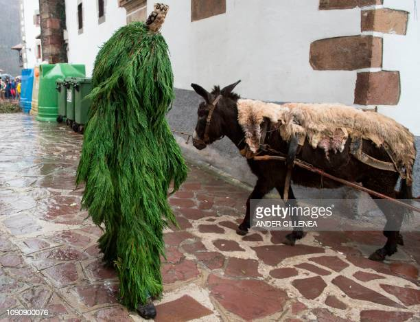 A reveller dressed as a tree attends celebrations of the ancient carnival of Zubieta in the northern Spanish Navarra province on January 29 2019 The...