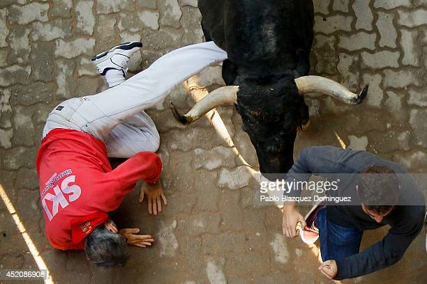 A reveller falls while running with the Adolfo Martin Andres's fighting bulls at the end of the run during the eighth day of the San Fermin Running...
