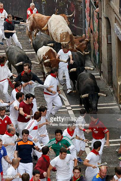 A reveller gets in the middle of Miura's fighting bulls while running at Calle Estafeta during the ninth day of the San Fermin Running Of The Bulls...