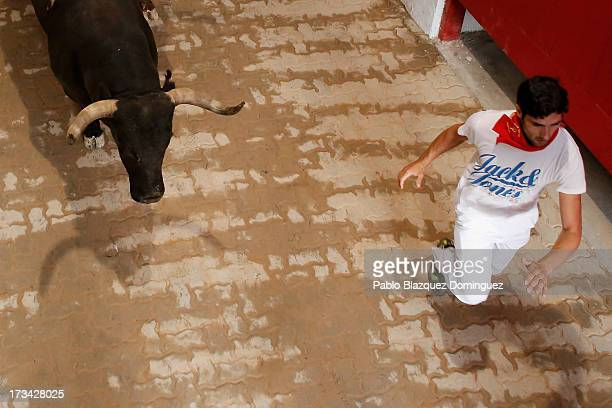 A reveller runs with a Miura's fighting bull along the passage way into the bullring during the ninth day of the San Fermin Running Of The Bulls...